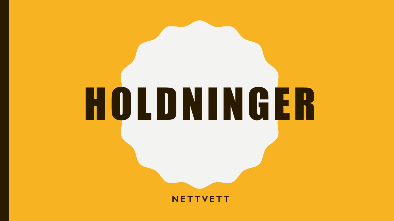 HOLDNINGER NETTVETT