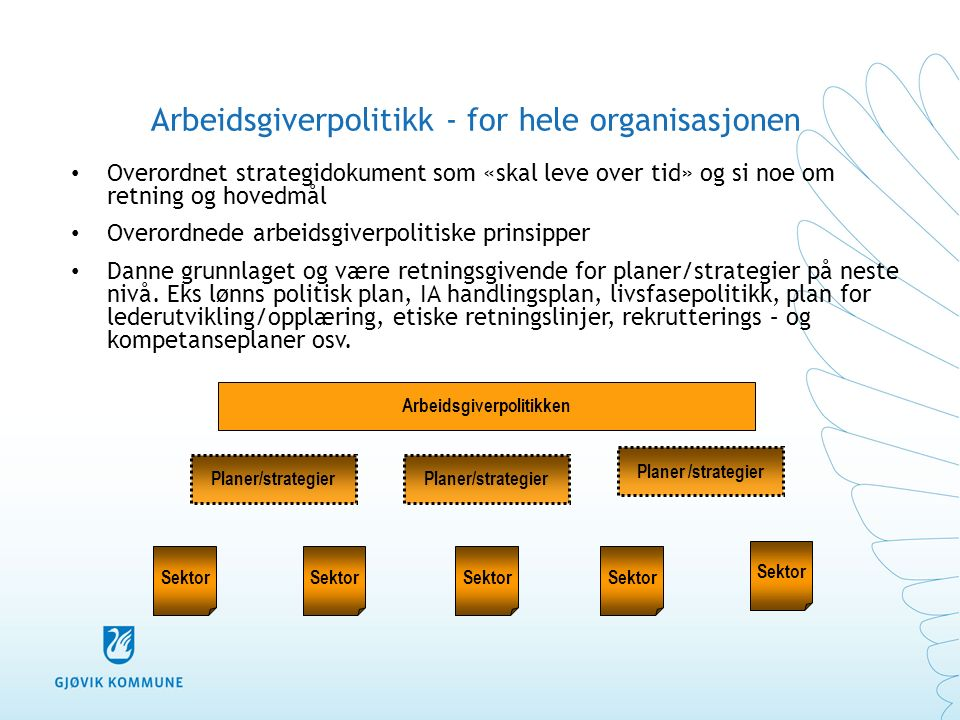 Arbeidsgiverpolitikk - for hele organisasjonen Overordnet strategidokument som «skal leve over tid» og si noe om retning og hovedmål Overordnede arbeidsgiverpolitiske prinsipper Danne grunnlaget og være retningsgivende for planer/strategier på neste nivå.