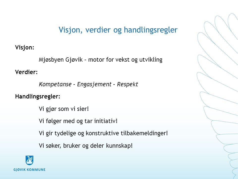 Visjon, verdier og handlingsregler Visjon: Mjøsbyen Gjøvik – motor for vekst og utvikling Verdier: Kompetanse – Engasjement – Respekt Handlingsregler: