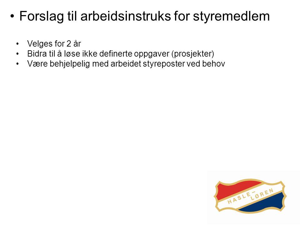 Forslag til arbeidsinstruks for styremedlem Velges for 2 år Bidra til å løse ikke definerte oppgaver (prosjekter) Være behjelpelig med arbeidet styreposter ved behov