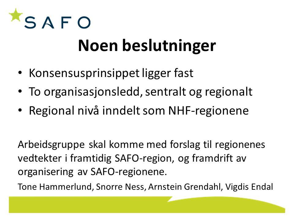 Noen beslutninger Konsensusprinsippet ligger fast To organisasjonsledd, sentralt og regionalt Regional nivå inndelt som NHF-regionene Arbeidsgruppe sk