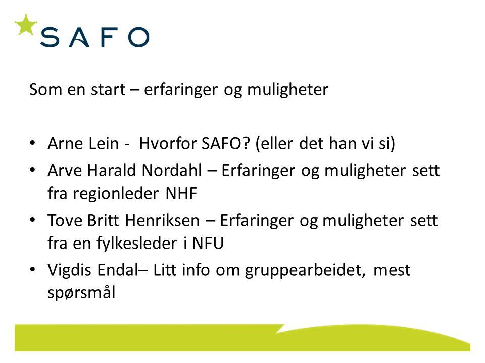 Som en start – erfaringer og muligheter Arne Lein - Hvorfor SAFO? (eller det han vi si) Arve Harald Nordahl – Erfaringer og muligheter sett fra region