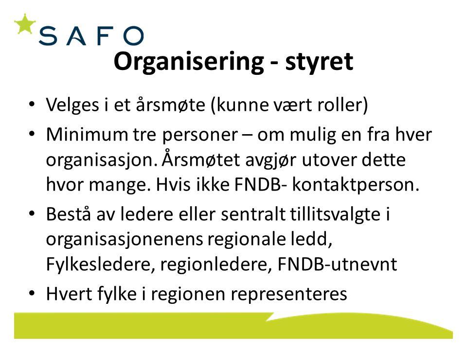 Organisering - styret Velges i et årsmøte (kunne vært roller) Minimum tre personer – om mulig en fra hver organisasjon. Årsmøtet avgjør utover dette h