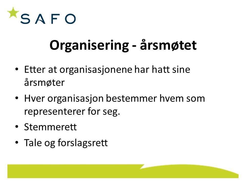 Organisering - årsmøtet Etter at organisasjonene har hatt sine årsmøter Hver organisasjon bestemmer hvem som representerer for seg. Stemmerett Tale og