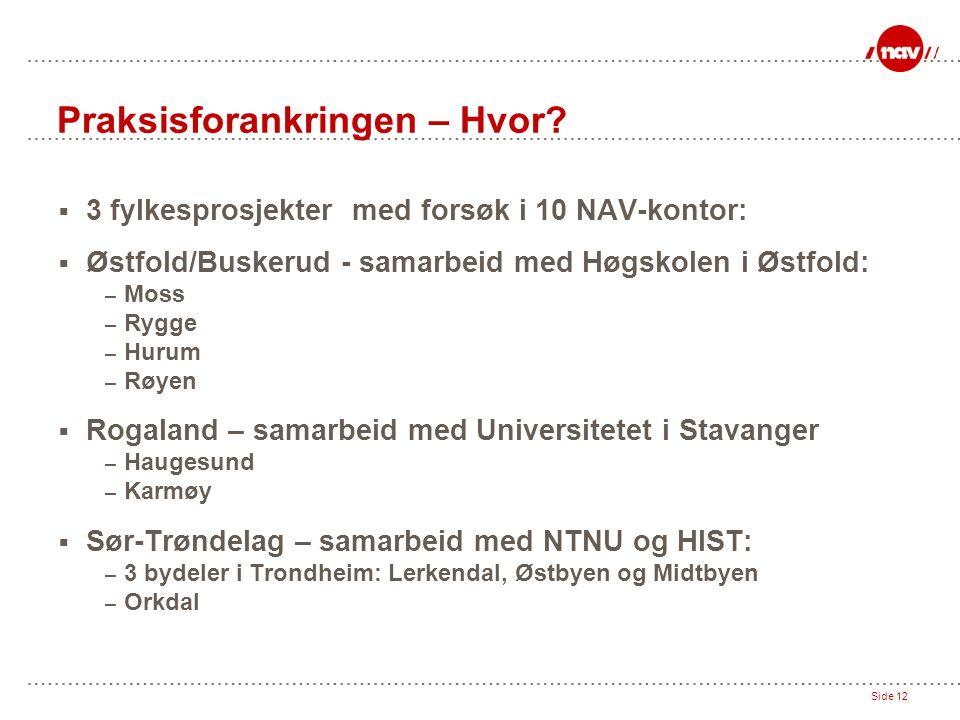 Side 12 Praksisforankringen – Hvor?  3 fylkesprosjekter med forsøk i 10 NAV-kontor:  Østfold/Buskerud - samarbeid med Høgskolen i Østfold: – Moss –