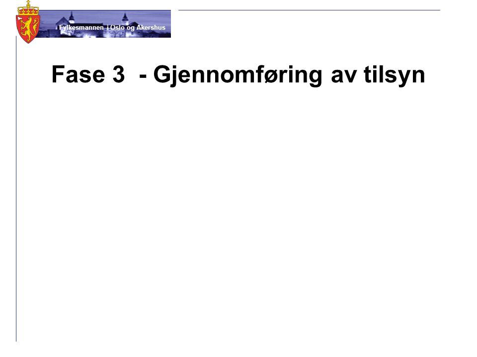 Fylkesmannen i Oslo og Akershus Fase 3 - Gjennomføring av tilsyn