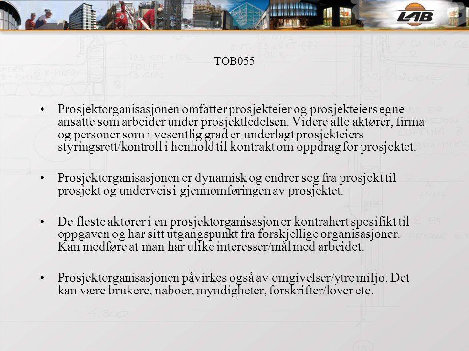TOB055 Aktører/roller: Prosjekteier: er den juridiske person som har eieransvaret for og eierrettighetene til prosjektet.
