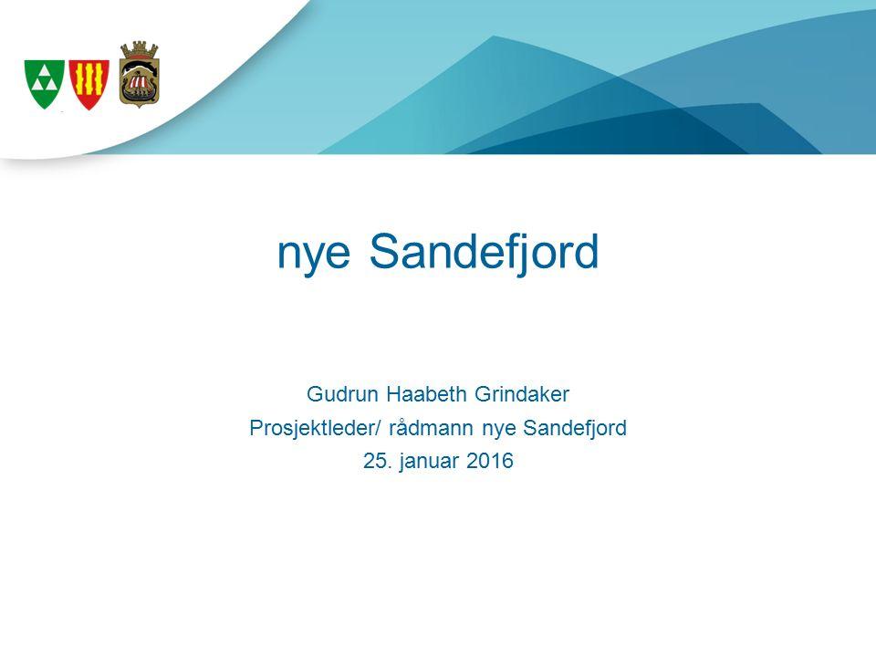 nye Sandefjord Gudrun Haabeth Grindaker Prosjektleder/ rådmann nye Sandefjord 25. januar 2016