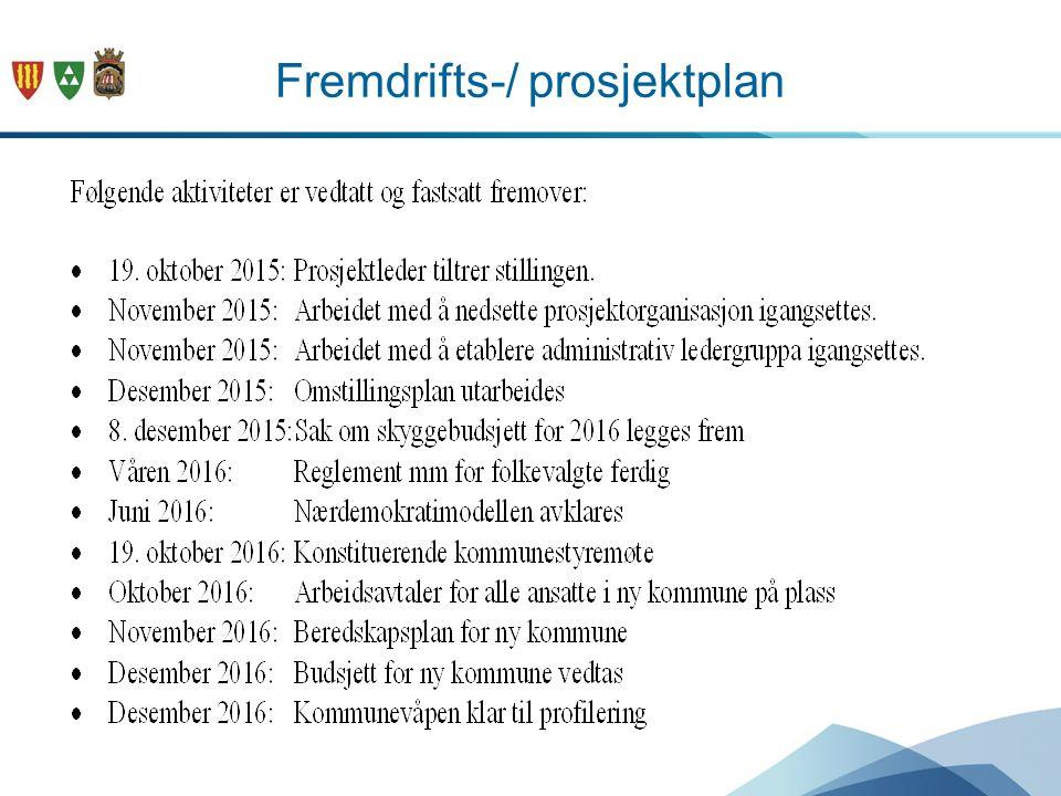 Fremdrifts-/ prosjektplan