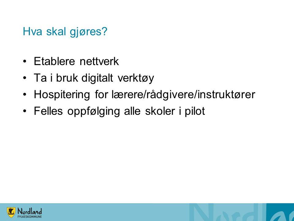 Hva skal gjøres? Etablere nettverk Ta i bruk digitalt verktøy Hospitering for lærere/rådgivere/instruktører Felles oppfølging alle skoler i pilot