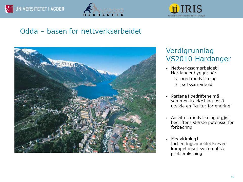 12 Odda – basen for nettverksarbeidet Nettverkssamarbeidet i Hardanger bygger på: bred medvirkning partssamarbeid Partene i bedriftene må sammen trekk