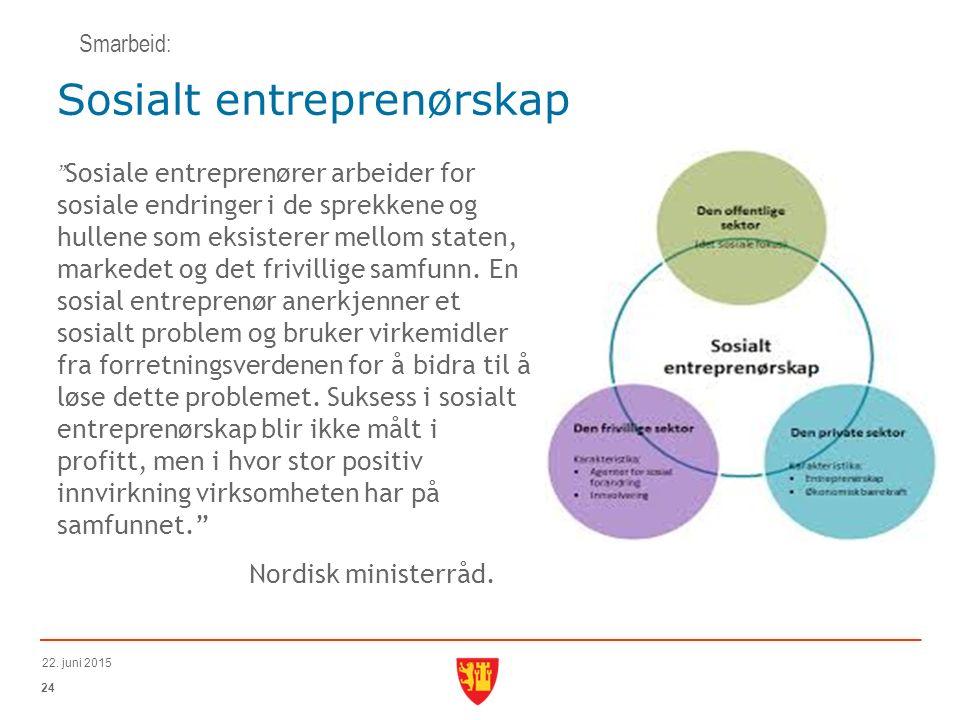 Sosiale entreprenører arbeider for sosiale endringer i de sprekkene og hullene som eksisterer mellom staten, markedet og det frivillige samfunn.