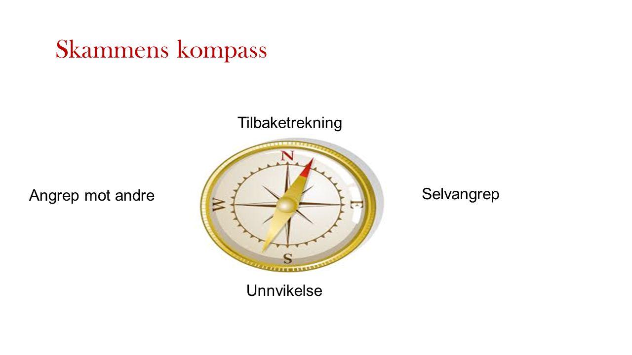 Tilbaketrekning Selvangrep Unnvikelse Angrep mot andre Skammens kompass
