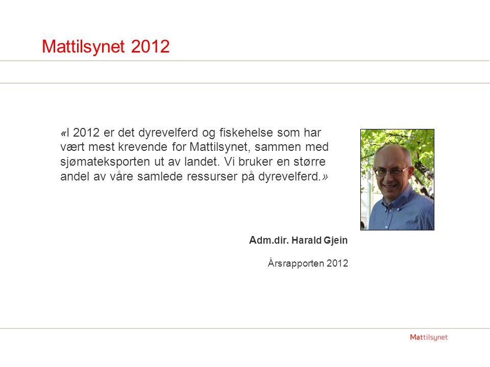 Mattilsynet 2012 « I 2012 er det dyrevelferd og fiskehelse som har vært mest krevende for Mattilsynet, sammen med sjømateksporten ut av landet. Vi bru