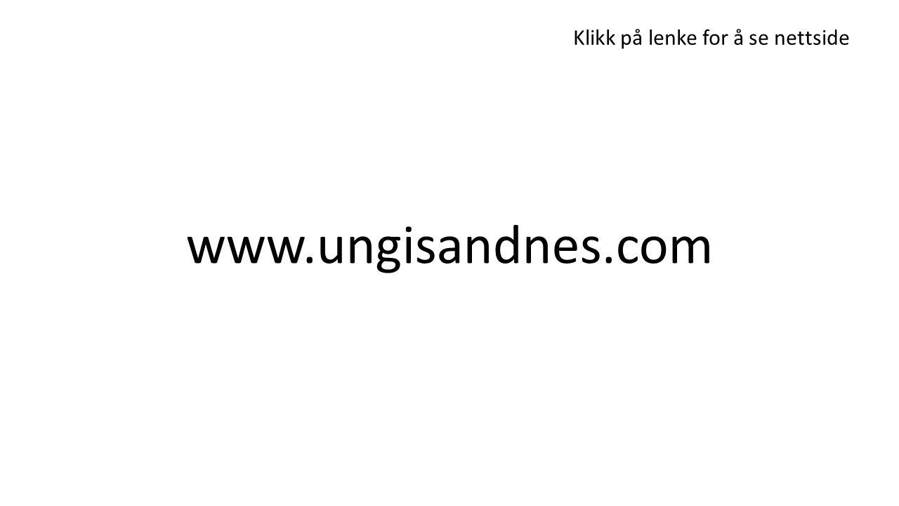 www.ungisandnes.com Klikk på lenke for å se nettside