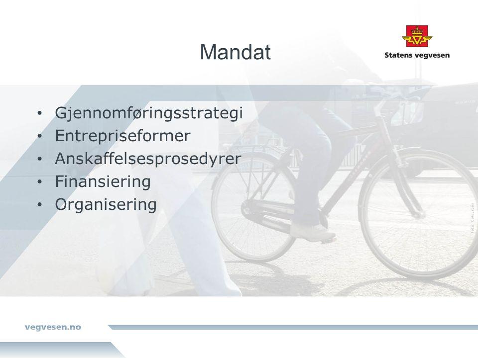 Mandat Gjennomføringsstrategi Entrepriseformer Anskaffelsesprosedyrer Finansiering Organisering