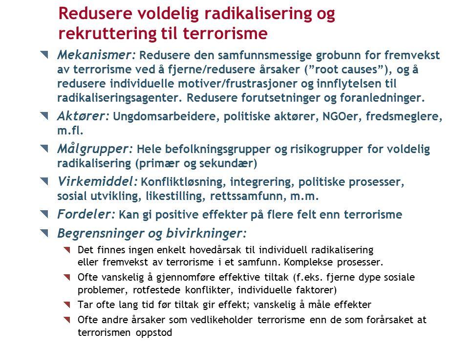 Redusere voldelig radikalisering og rekruttering til terrorisme Mekanismer: Redusere den samfunnsmessige grobunn for fremvekst av terrorisme ved å fjerne/redusere årsaker ( root causes ), og å redusere individuelle motiver/frustrasjoner og innflytelsen til radikaliseringsagenter.