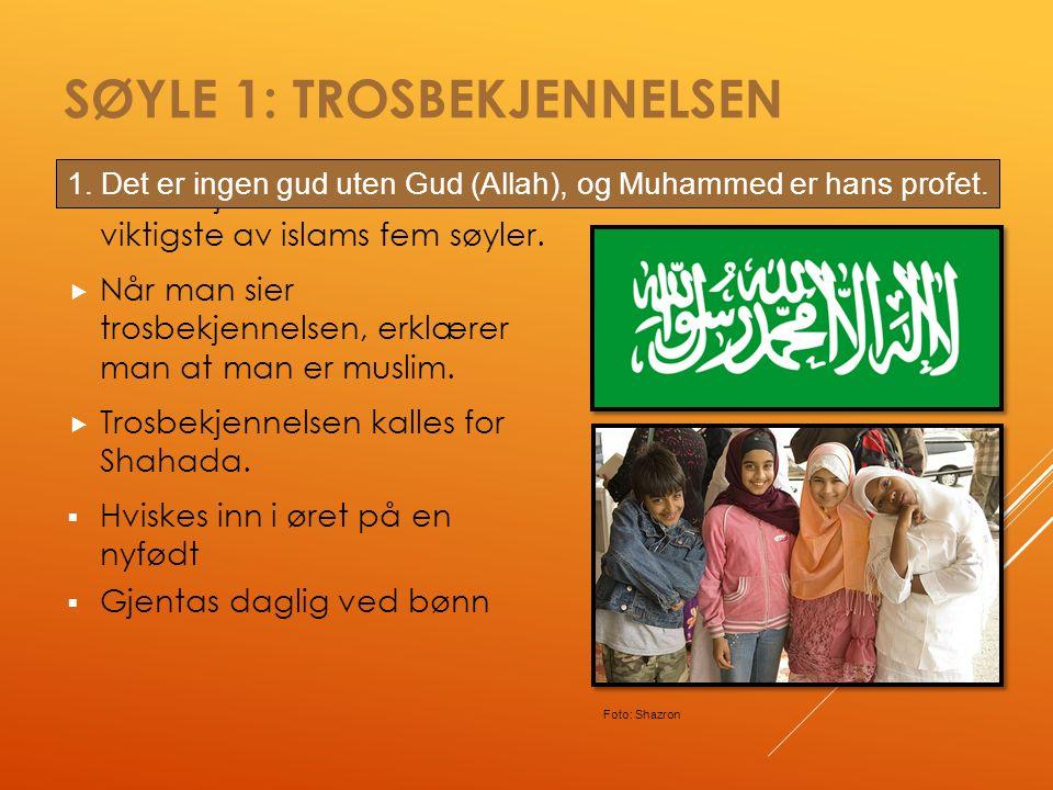 SØYLE 1: TROSBEKJENNELSEN  Trosbekjennelsen er den viktigste av islams fem søyler.