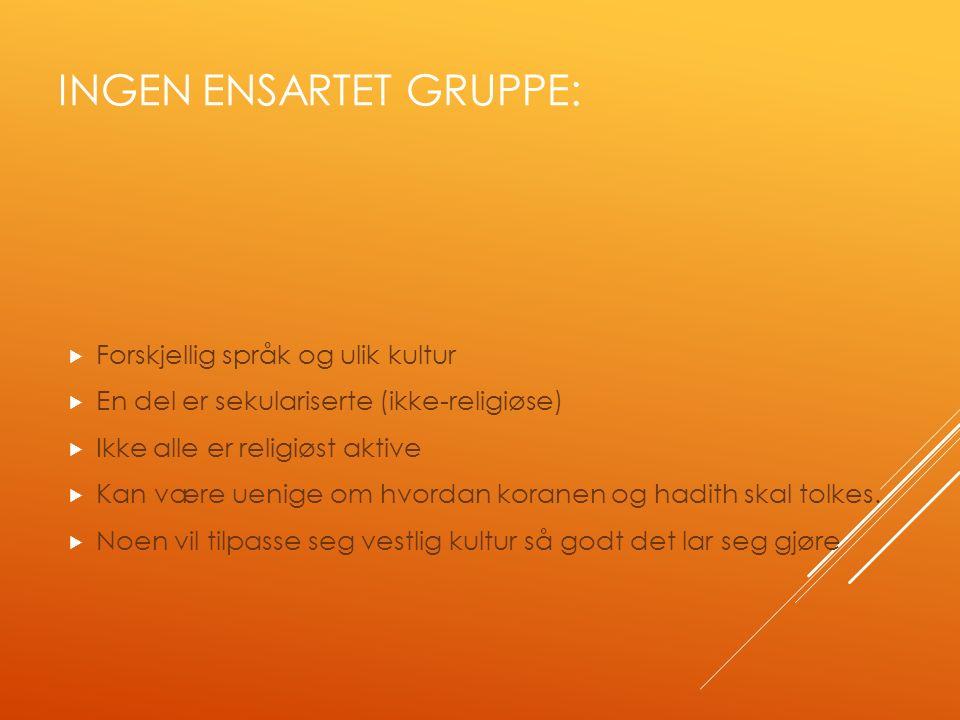 INGEN ENSARTET GRUPPE:  Forskjellig språk og ulik kultur  En del er sekulariserte (ikke-religiøse)  Ikke alle er religiøst aktive  Kan være uenige om hvordan koranen og hadith skal tolkes.