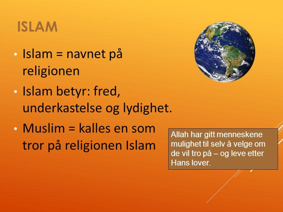 UTFORDRINGER 8A1  Det negative bildet media gir Islam  Debatten om tildekking  Ha kroppsøving sammen  Halal mat  Tid og rom til å be  Rasisme og fordommer  Skjærer alle over en kam  Lever i mindretall  Ivareta religionen sin