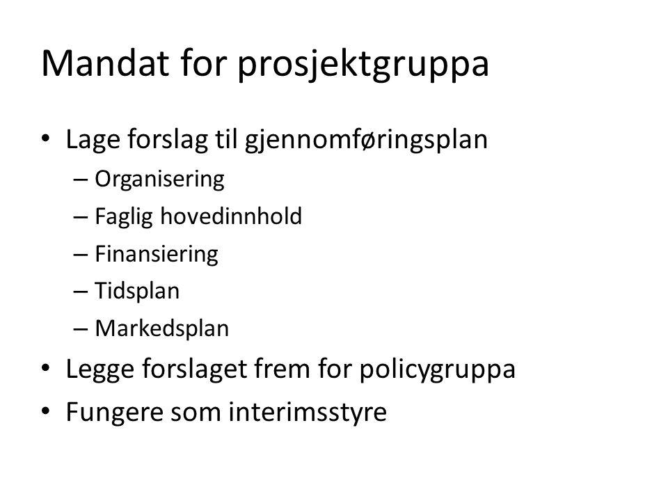 Mandat for prosjektgruppa Lage forslag til gjennomføringsplan – Organisering – Faglig hovedinnhold – Finansiering – Tidsplan – Markedsplan Legge forslaget frem for policygruppa Fungere som interimsstyre