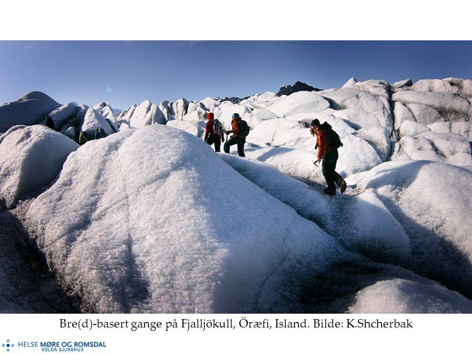Bre(d)-basert gange på Fjalljökull, Öræfi, Island. Bilde: K.Shcherbak