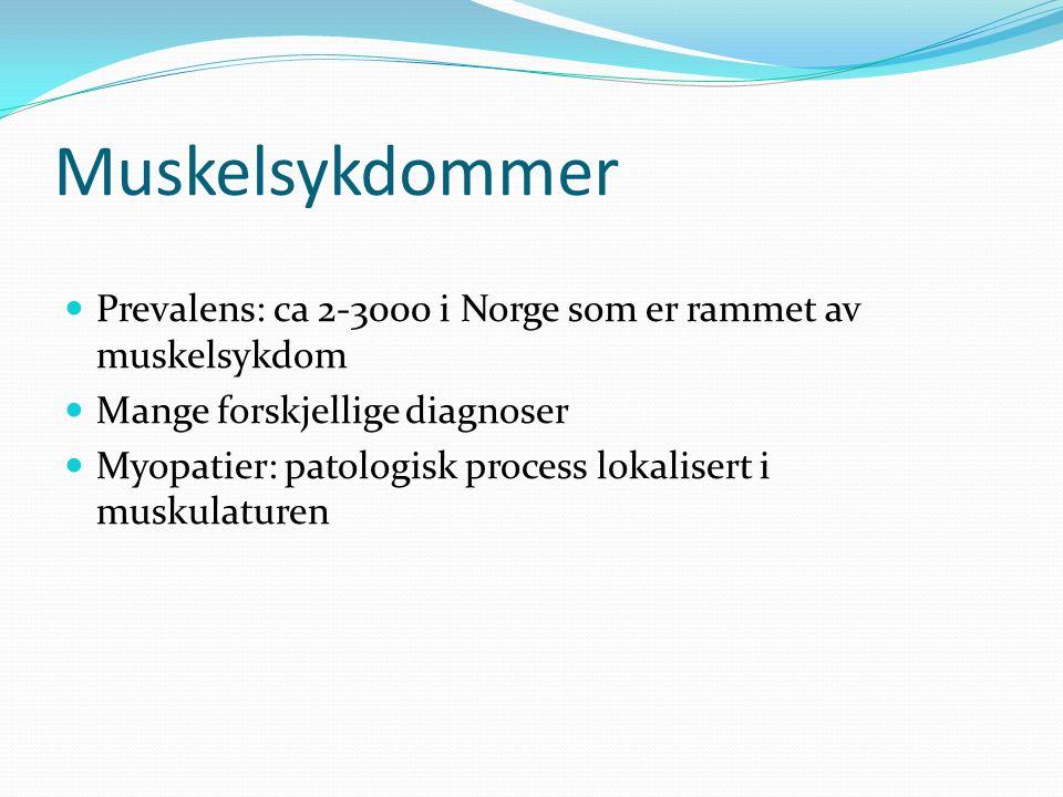 Muskelsykdommer Prevalens: ca 2-3000 i Norge som er rammet av muskelsykdom Mange forskjellige diagnoser Myopatier: patologisk process lokalisert i muskulaturen