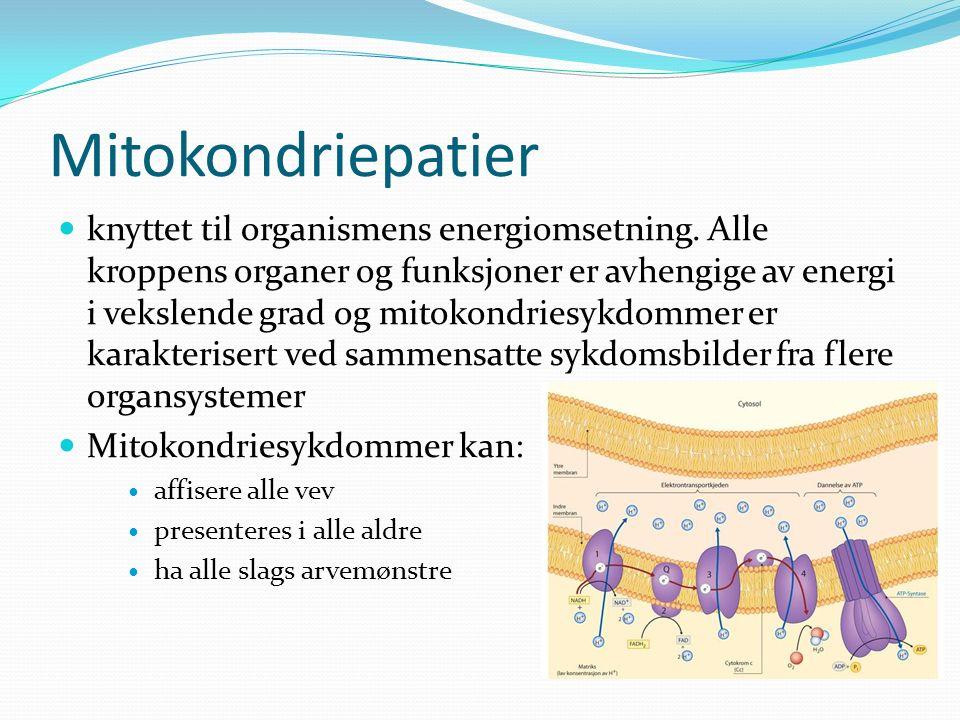 Mitokondriepatier knyttet til organismens energiomsetning.
