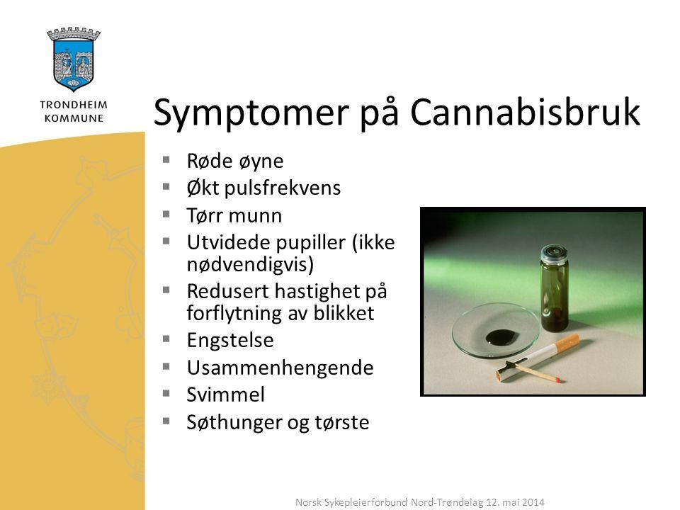 Symptomer på Cannabisbruk  Røde øyne  Økt pulsfrekvens  Tørr munn  Utvidede pupiller (ikke nødvendigvis)  Redusert hastighet på forflytning av blikket  Engstelse  Usammenhengende  Svimmel  Søthunger og tørste Norsk Sykepleierforbund Nord-Trøndelag 12.
