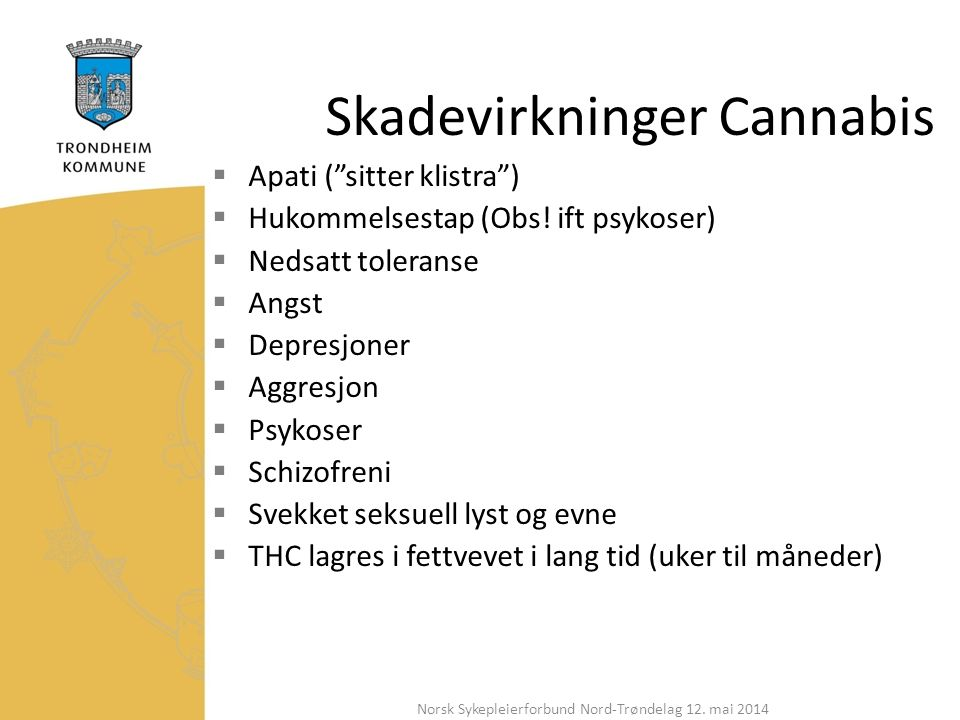 Skadevirkninger Cannabis  Apati ( sitter klistra )  Hukommelsestap (Obs.
