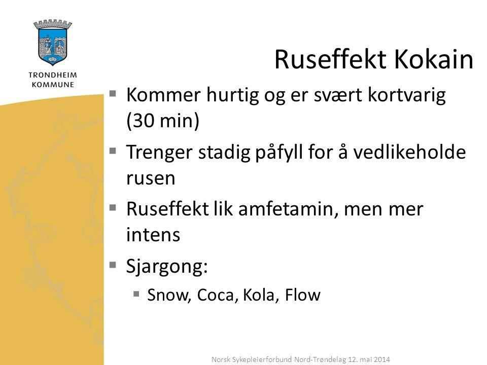 Ruseffekt Kokain  Kommer hurtig og er svært kortvarig (30 min)  Trenger stadig påfyll for å vedlikeholde rusen  Ruseffekt lik amfetamin, men mer intens  Sjargong:  Snow, Coca, Kola, Flow Norsk Sykepleierforbund Nord-Trøndelag 12.