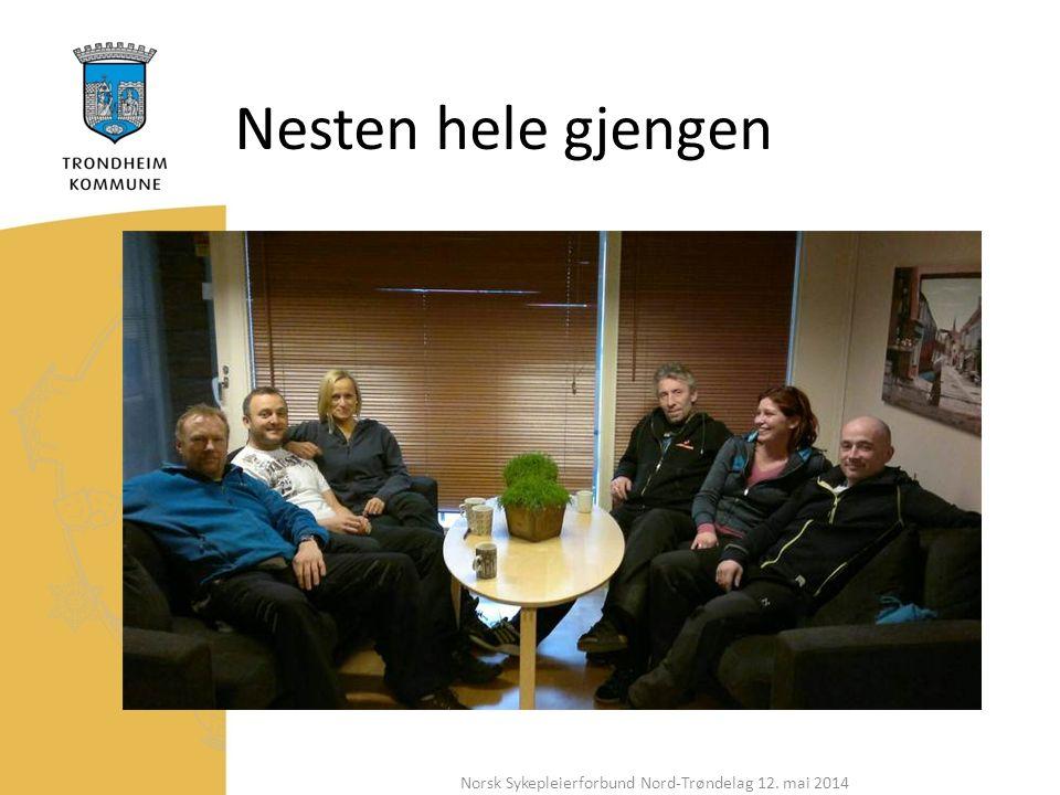Nesten hele gjengen Norsk Sykepleierforbund Nord-Trøndelag 12. mai 2014