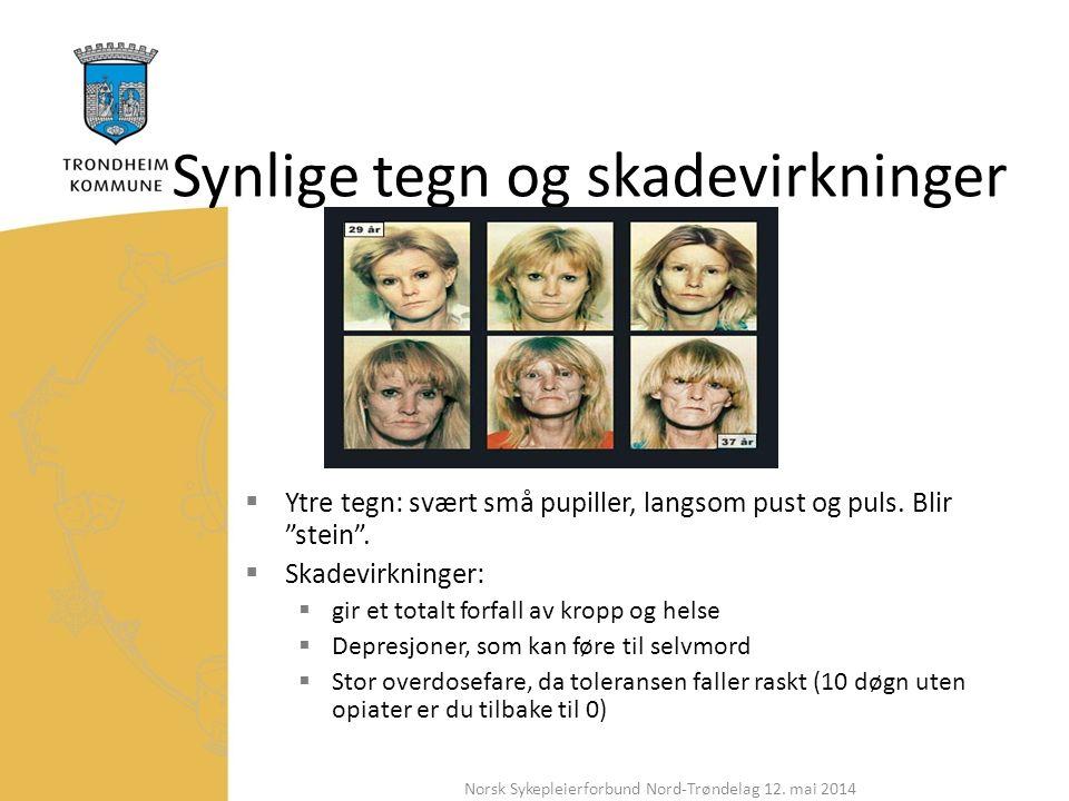 Synlige tegn og skadevirkninger  Ytre tegn: svært små pupiller, langsom pust og puls.