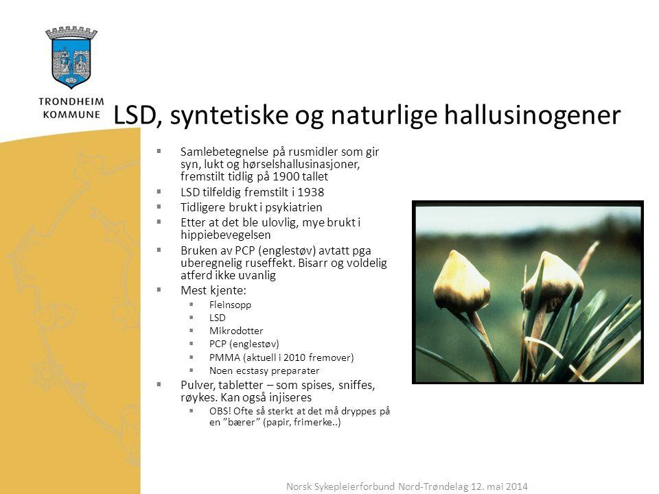 LSD, syntetiske og naturlige hallusinogener  Samlebetegnelse på rusmidler som gir syn, lukt og hørselshallusinasjoner, fremstilt tidlig på 1900 tallet  LSD tilfeldig fremstilt i 1938  Tidligere brukt i psykiatrien  Etter at det ble ulovlig, mye brukt i hippiebevegelsen  Bruken av PCP (englestøv) avtatt pga uberegnelig ruseffekt.