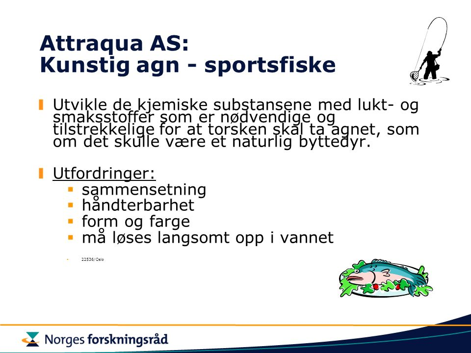Attraqua AS: Kunstig agn - sportsfiske Utvikle de kjemiske substansene med lukt- og smaksstoffer som er nødvendige og tilstrekkelige for at torsken skal ta agnet, som om det skulle være et naturlig byttedyr.