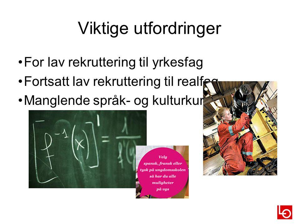Viktige utfordringer For lav rekruttering til yrkesfag Fortsatt lav rekruttering til realfag Manglende språk- og kulturkunnskap 11