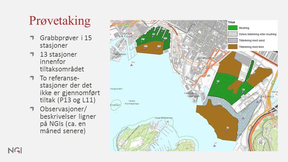 Prøvetaking Grabbprøver i 15 stasjoner 13 stasjoner innenfor tiltaksområdet To referanse- stasjoner der det ikke er gjennomført tiltak (P13 og L11) Observasjoner/ beskrivelser ligner på NGIs (ca.