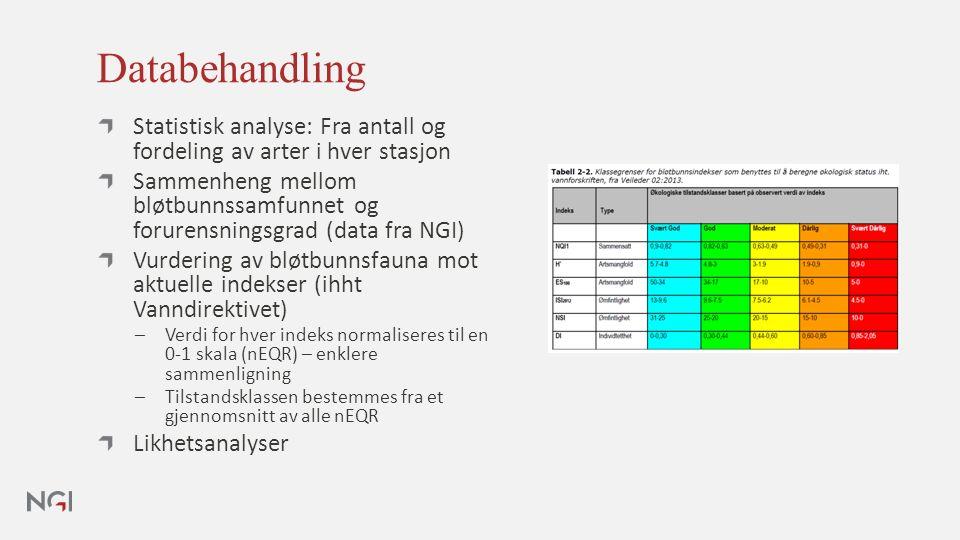 Databehandling Statistisk analyse: Fra antall og fordeling av arter i hver stasjon Sammenheng mellom bløtbunnssamfunnet og forurensningsgrad (data fra NGI) Vurdering av bløtbunnsfauna mot aktuelle indekser (ihht Vanndirektivet) ─Verdi for hver indeks normaliseres til en 0-1 skala (nEQR) – enklere sammenligning ─Tilstandsklassen bestemmes fra et gjennomsnitt av alle nEQR Likhetsanalyser