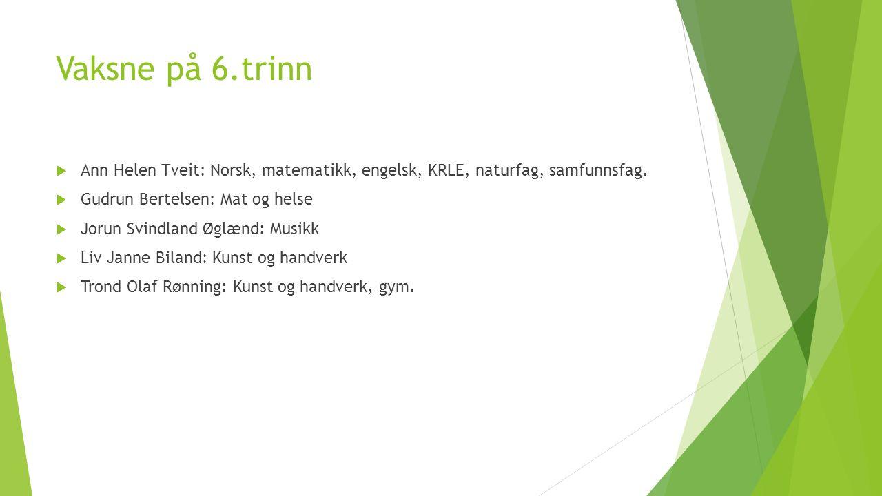 Vaksne på 6.trinn  Ann Helen Tveit: Norsk, matematikk, engelsk, KRLE, naturfag, samfunnsfag.