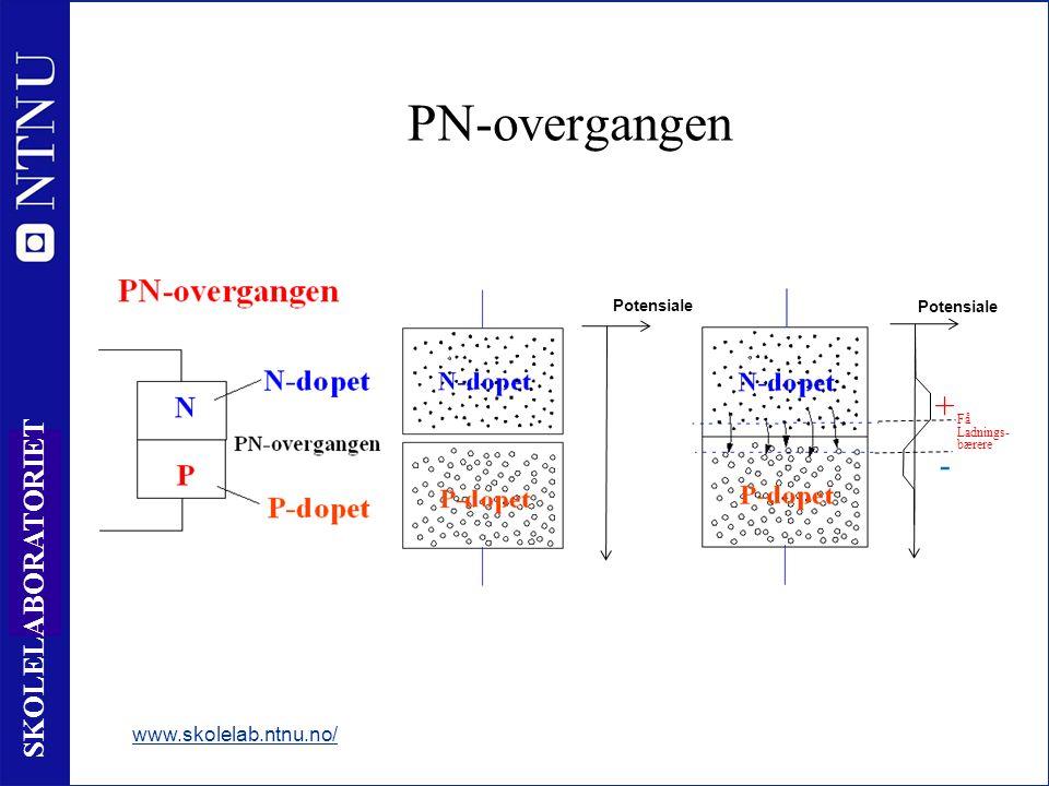 7 SKOLELABORATORIET PN-overgangen www.skolelab.ntnu.no/ Potensiale Få Ladnings- bærere + - Potensiale
