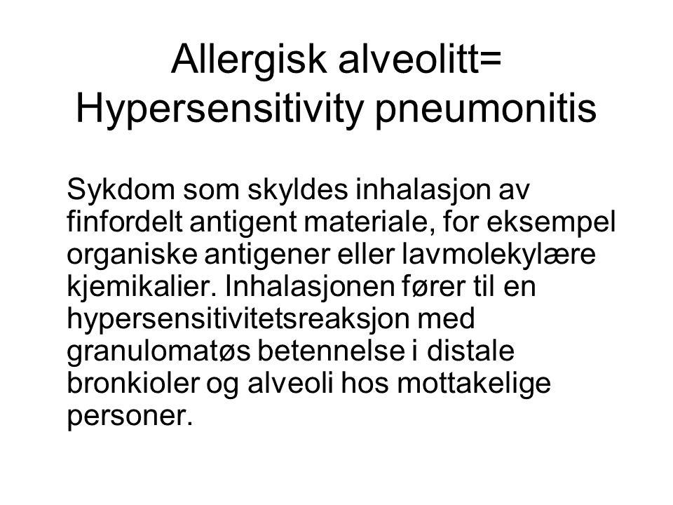 Allergisk alveolitt= Hypersensitivity pneumonitis Sykdom som skyldes inhalasjon av finfordelt antigent materiale, for eksempel organiske antigener ell