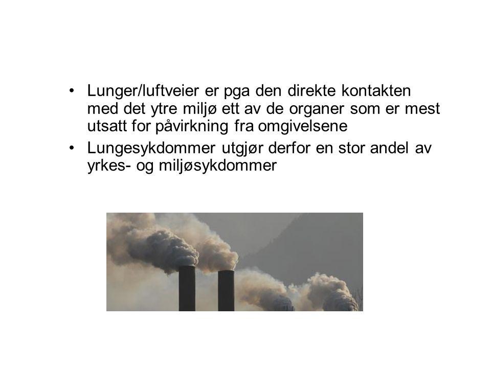 Lunger/luftveier er pga den direkte kontakten med det ytre miljø ett av de organer som er mest utsatt for påvirkning fra omgivelsene Lungesykdommer ut
