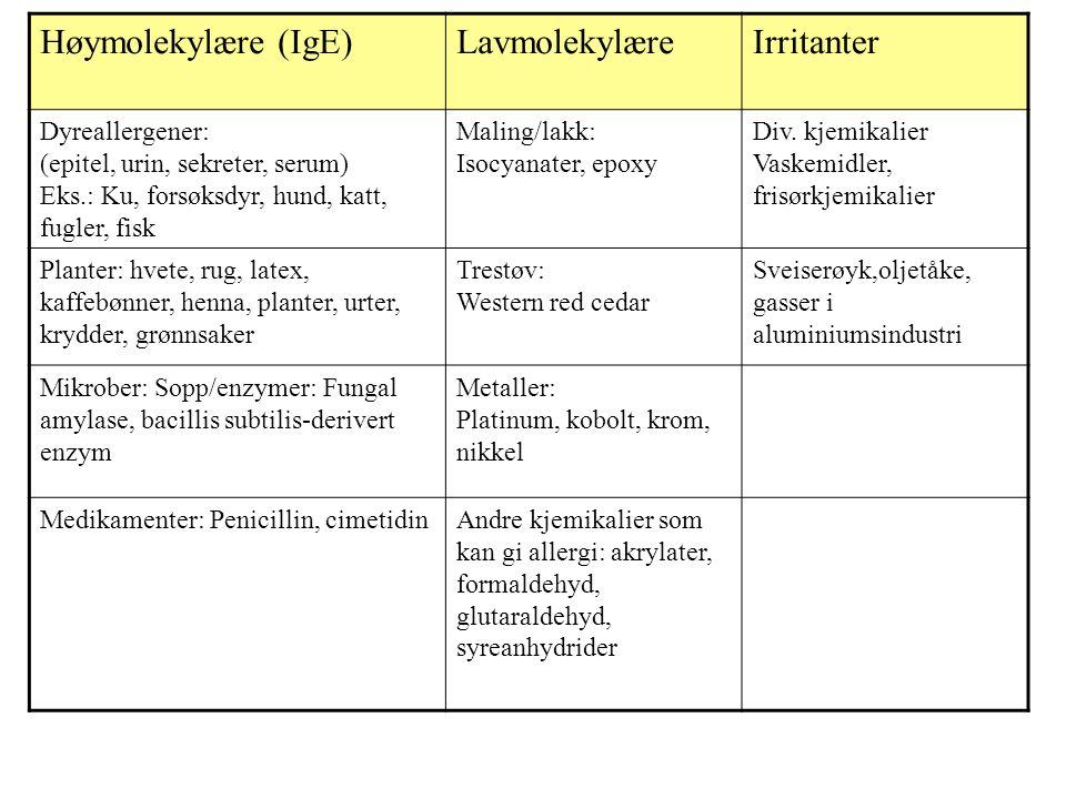 Høymolekylære (IgE)LavmolekylæreIrritanter Dyreallergener: (epitel, urin, sekreter, serum) Eks.: Ku, forsøksdyr, hund, katt, fugler, fisk Maling/lakk: