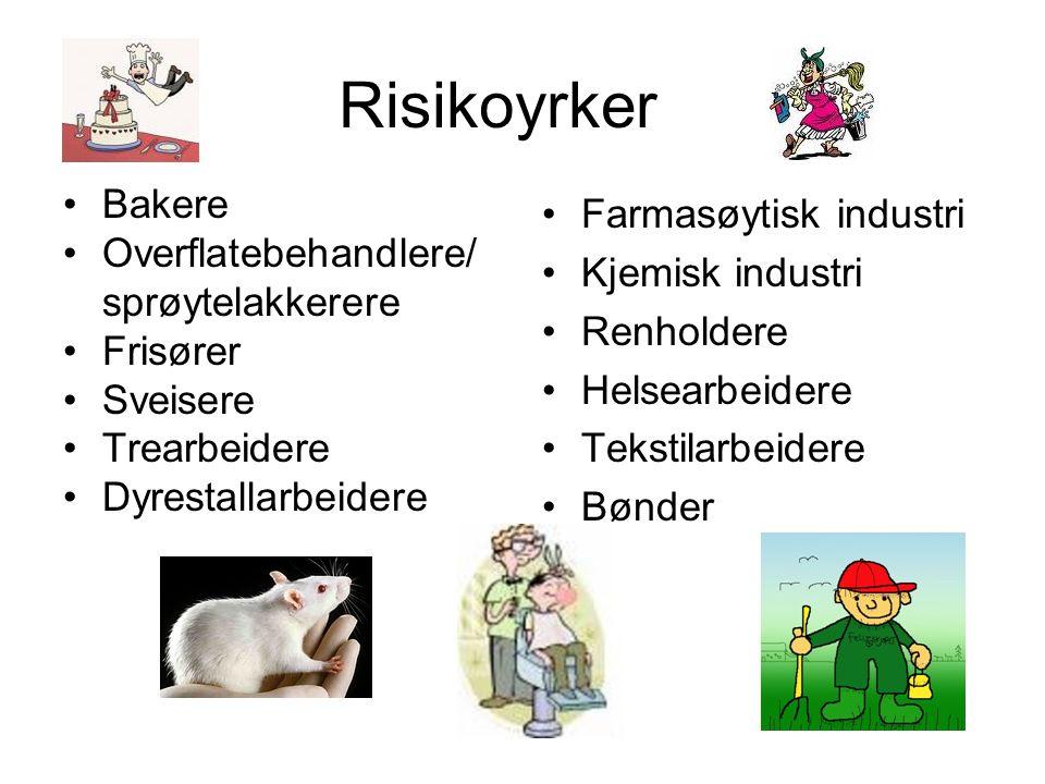 Risikoyrker Bakere Overflatebehandlere/ sprøytelakkerere Frisører Sveisere Trearbeidere Dyrestallarbeidere Farmasøytisk industri Kjemisk industri Renh