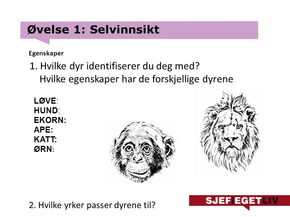 Øvelse 1: Selvinnsikt 1. Hvilke dyr identifiserer du deg med.