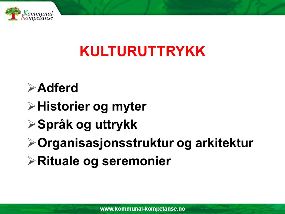 www.kommunal-kompetanse.no KULTURUTTRYKK  Adferd  Historier og myter  Språk og uttrykk  Organisasjonsstruktur og arkitektur  Rituale og seremonier