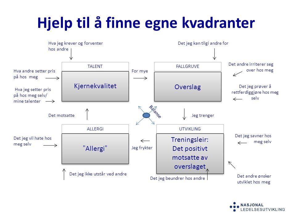 """Hjelp til å finne egne kvadranter Overslag Kjernekvalitet """"Allergi"""" Treningsleir: Det positivt motsatte av overslaget Treningsleir: Det positivt motsa"""