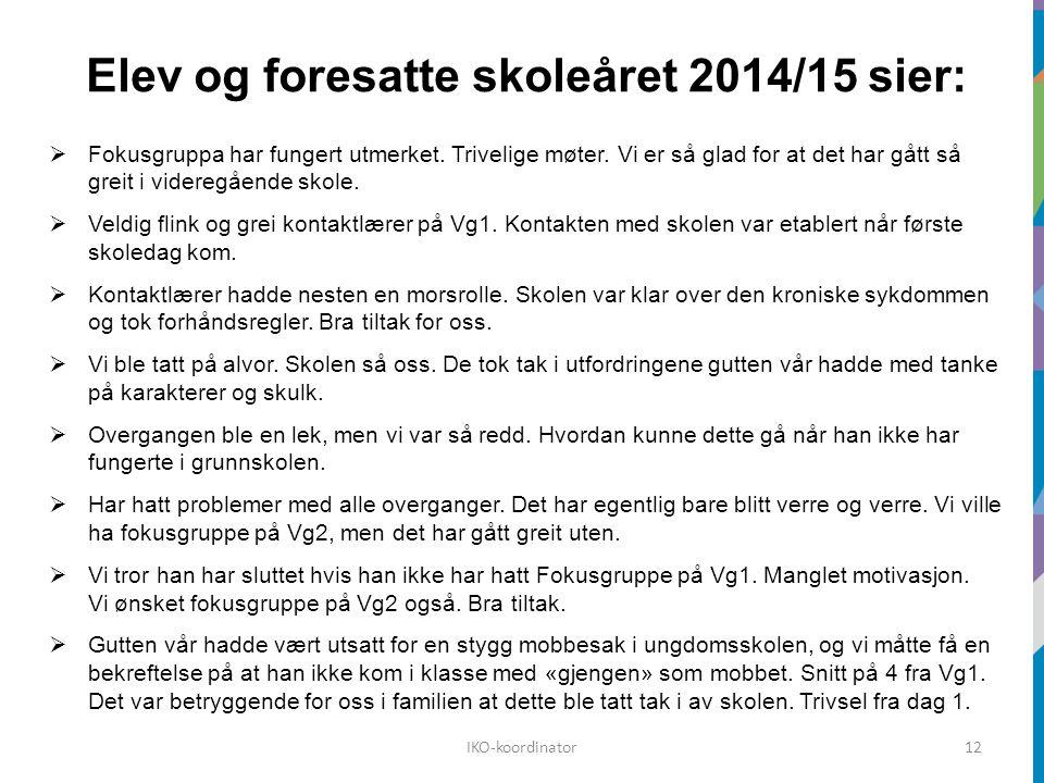 Elev og foresatte skoleåret 2014/15 sier:  Fokusgruppa har fungert utmerket.