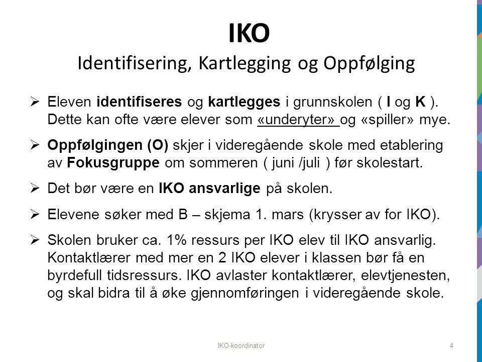 IKO Identifisering, Kartlegging og Oppfølging  Eleven identifiseres og kartlegges i grunnskolen ( I og K ).