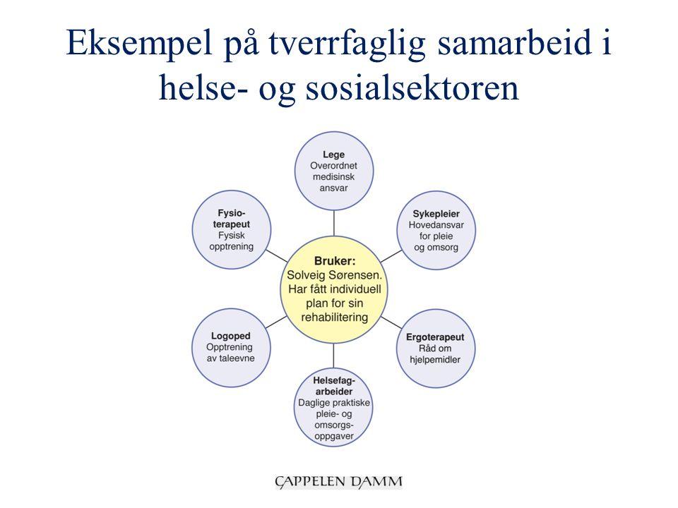 Eksempel på tverrfaglig samarbeid i helse- og sosialsektoren